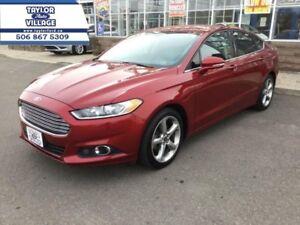 2013 Ford Fusion SE  - $109.68 B/W