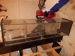 Glass display case shelving unit with light built in