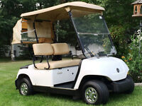~The Golf Cart Guy~ 2006 YAMAHA ELECT. LIMITED EDITION CART