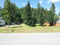 Large Mountain Lot in Crowsnest Pass (Blairmore) Alberta
