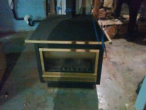 Insta-Flame Natural Gas Fireplace And Stainless Steel Chimney