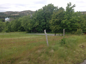 Land for Sale in the Heart of Brigus!!!! St. John's Newfoundland image 7