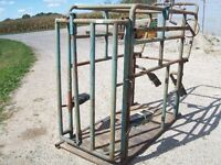 cattle chute with locking headgate