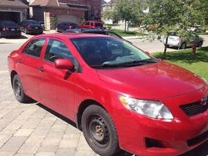 Toyota Corolla 2010 (MUST SEE) *GREAT CONDITION!