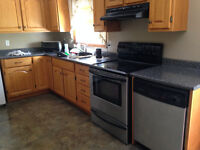 ** RENTING OUT BASEMENT APARTMENT**