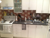 Clean bright Newly renovated  41/2  51/2apartment