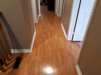 Looking for an expert to fix squeaky laminate floor