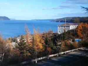 Rooms / bungalow for rent.  St. John's Newfoundland image 3