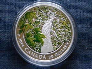 3-49 - 2014 CANADA $20 MAPLE CANOPY.