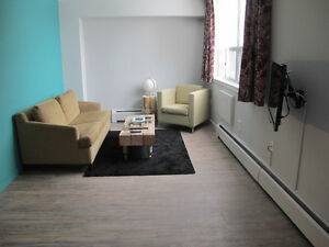 Fully Furnished Downtown One Bedroom
