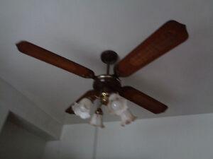 ventilateur luminaire