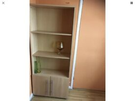 Shelves with a cupboard