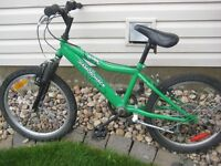 Diamondback Octane 20 6 speed kids mountain bike