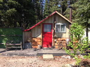 Teeny tiny cabin *available now until May 30*