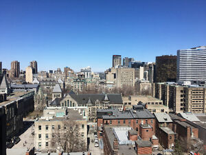 Furnished studio (May7th - end of August 2017), Montreal center