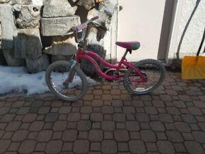 Girls bike 6-9yo