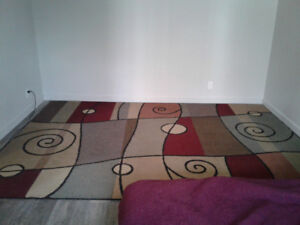 10 by 8 foot rug  *** Reduced already by $100.00 ***