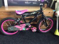 Tinker bell bike