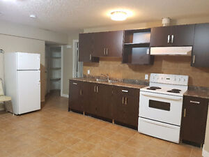 WALKOUT 1 bed 1 bath basement suite in laural south edmonton Edmonton Edmonton Area image 2
