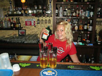 Professional Certfied Bartender for your upcoming Holiday Events