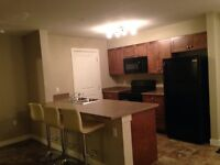 Fully Furnished NEW Condo in Estevan!