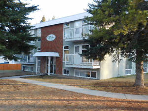 Upgraded 2 Bedroom Condo close to new hospital in Edson, AB