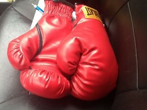 XL BOXING GLOVES