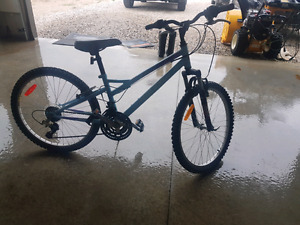 "Raleigh 24"" Woman's Mountain Bike"