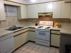 1 Bedroom Basement Apartment for rent in West Woodbridge