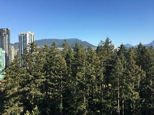 Brand New, Executive, 1 bedroom by Coquitlam Centre