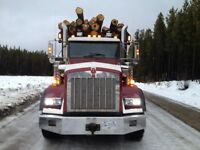 equiment operator/lowbed/ log truck