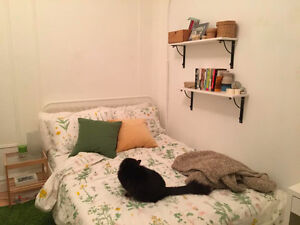 Room for rent in the heart of Mile End - Queer friendly
