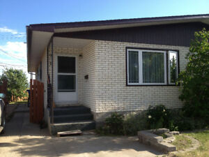 Spacious finished upper level and basement floor 4 bedrooms + 1