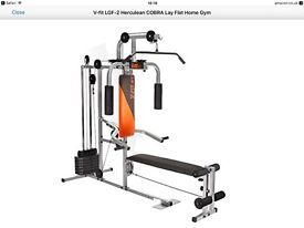 Multi Gym & Weights