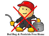 You Can Kill Bed Bugs Yourself