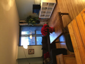 Room for rent in this two bedroom apartment, close to downtown