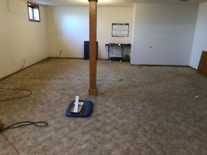 Free Carpet - living room, dining room, bedrooms, basement.
