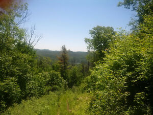 Enchanting 300 acres of land   /   About 1.5 hour from Ottawa