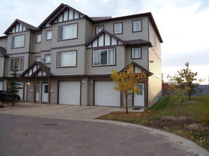 Beautiful, fully furnished Timberlea 3 bedrooms townhouse
