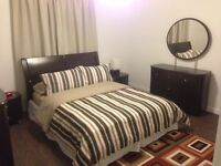 Newly Renovated Furnished Basement Suite for Rent in Parkview