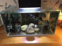 *gone pending collection* 23 litre fish tank & stand