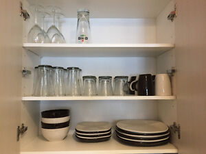 Plates + Tupperware + mugs + misc for sale