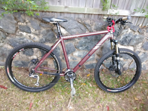 Fluid men's mountain bike.