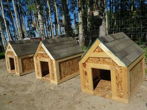 "Brand New 36""X48"" Dog Houses $100.00 ( IN STOCK)"