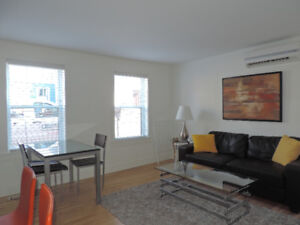 Downtown/1bedroom flat/furnished/parking/rent+utilities+WIFI