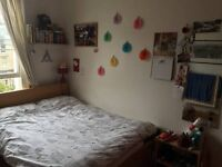 Double room in lovely house in Bath City Centre