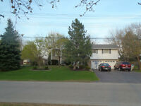 OPEN HOUSE SUNDAY MAY 31 -  77 MacHenry St.  Forest, Ontario