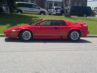 Lotus Esprit Turbo 1984 RARE