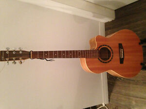 Guitare Normand Acoustique Encore B20 CW Folk 4Tone