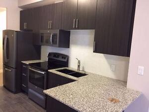 1 Victoria One Bedroom Downtown Kitchener Fully Upgraded Condo Kitchener / Waterloo Kitchener Area image 5